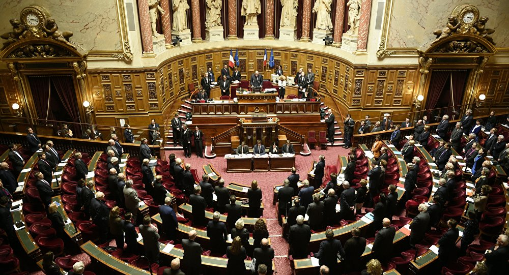 French Senate. (File)